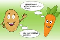 potato-carrot-veggie