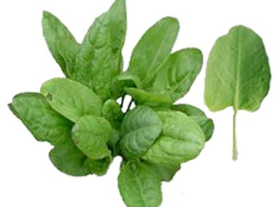 French Sorrel Health Benefits , Nutrition Know How