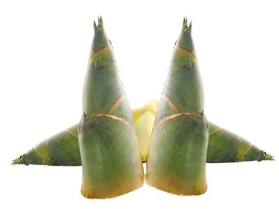 Nutrition Guide and Health Facts of Bamboo Shoots