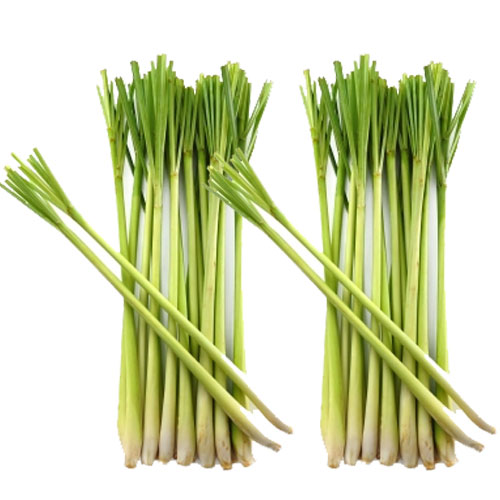 vitamin and lemon grass View the nutrition for lemon grass (citronella), including calories, carbs, fat, protein, cholesterol, and more (raw) want to use it in a meal plan head to the diet generator and enter the number of calories you want.
