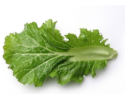 Mustard greens Nutrition and  Beneficial Properties