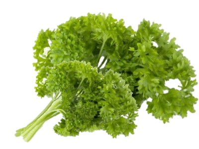 Parsley- Nutrition Guide and its Healthy Properties