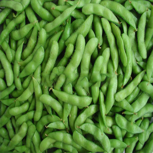 Soy Beans : Nutrition Guide & Healthy Eating | Veggies Info