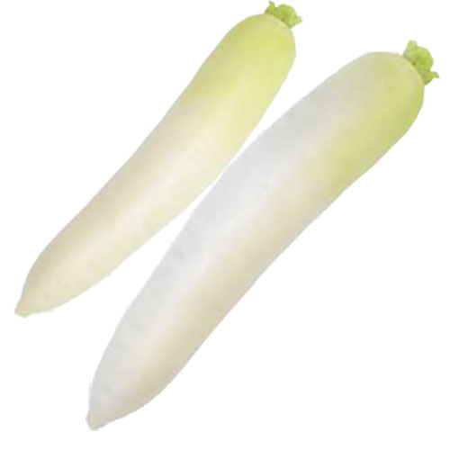 Health Information and Nutrition Guide | Radish