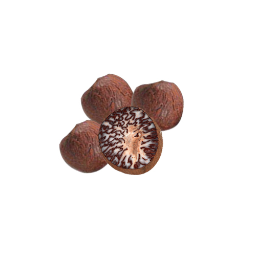 Classical Areca Nuts Health Benefits and Nutrition Facts
