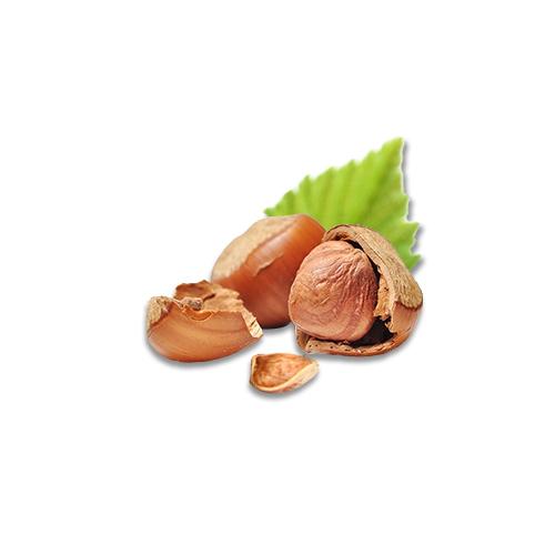 Hazelnuts Nutrition Value and Health Benefits