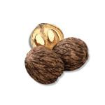 Natural Flavor of Black Walnut