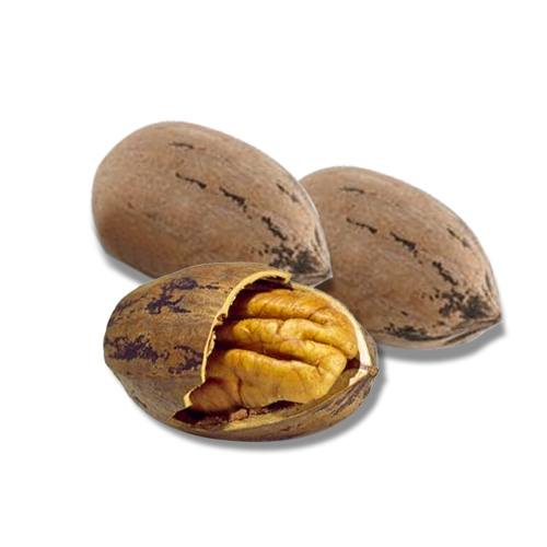 Pecan Fruit Nuts Health Facts and Nutrition Values