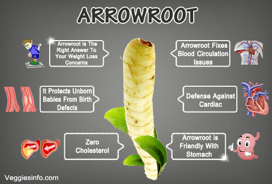Arrowroot And Its Health Benefits