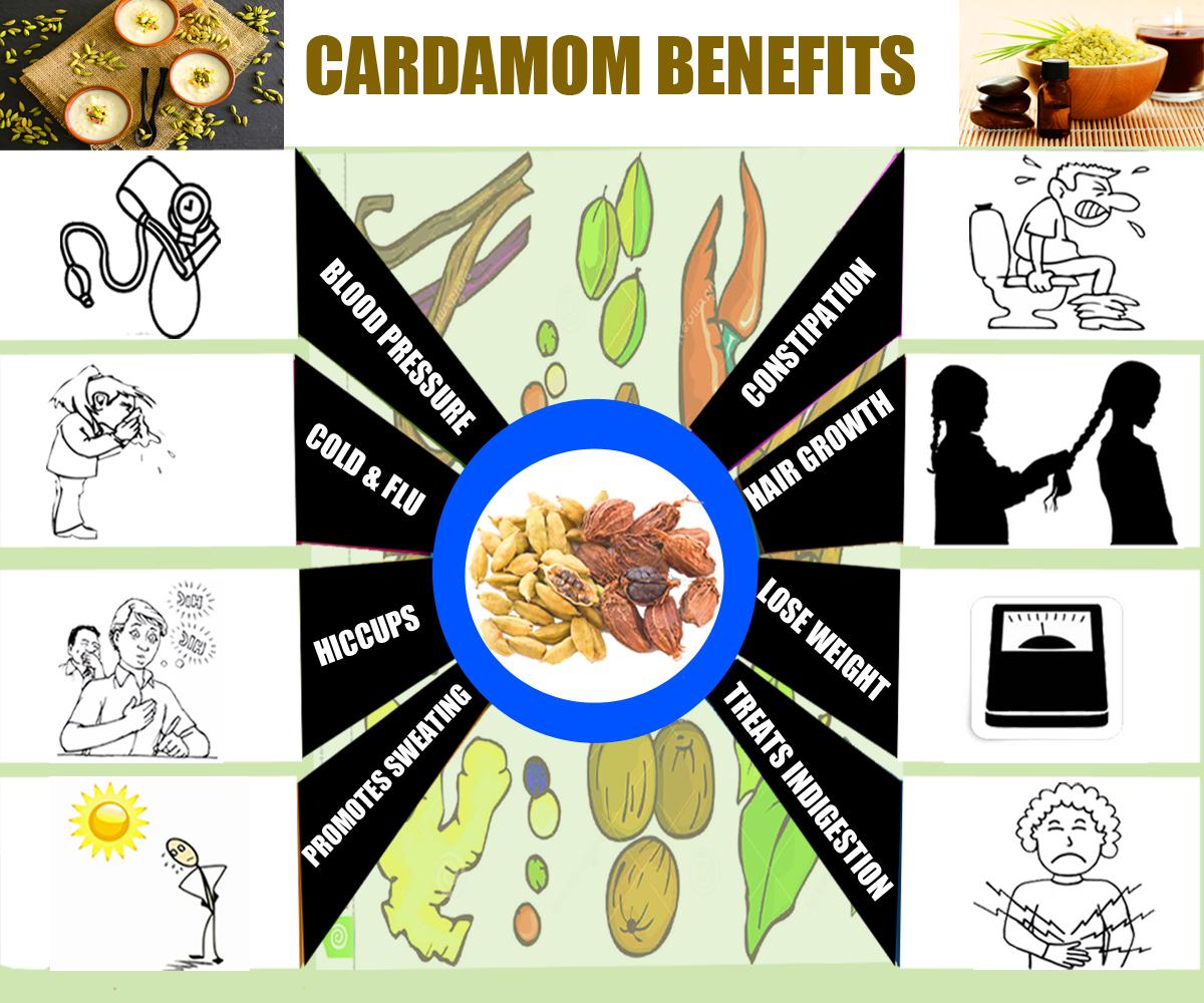 Cardamom-Various Uses