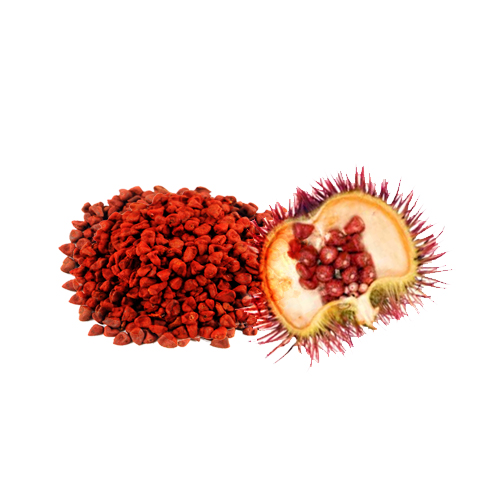 Annatto Seeds And Its Amazing Health Benefits