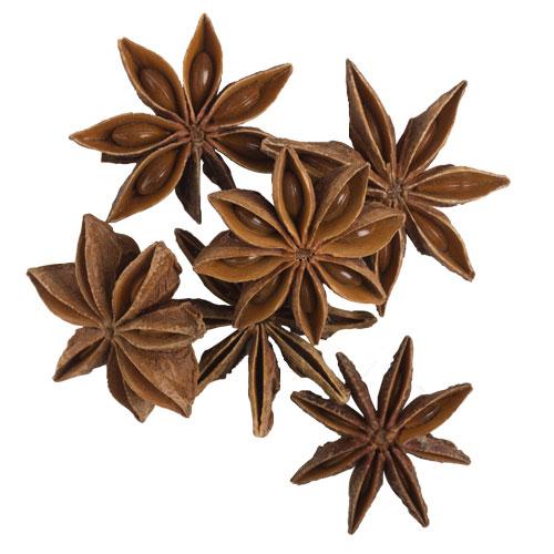 star anise health benefits - 500×500