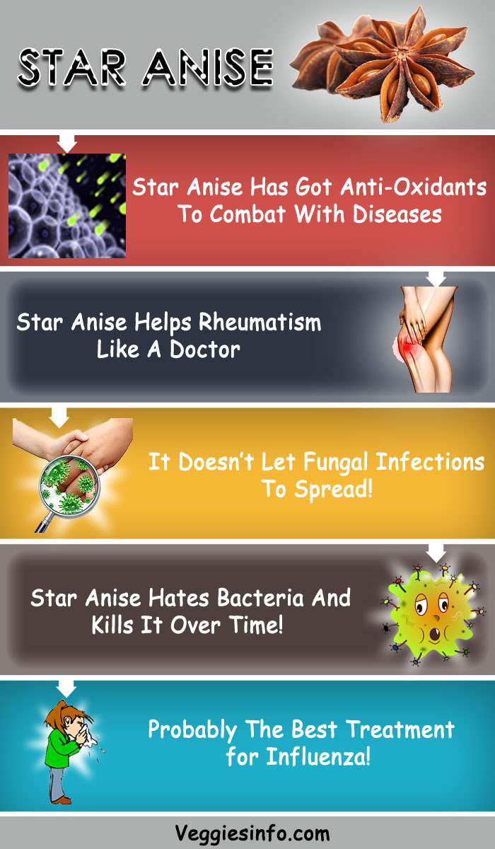 Star Anise Reveal Its Hidden Health Benefits Here