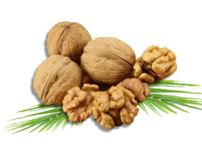 Stone Fruit Walnut Uses and Health Benefits
