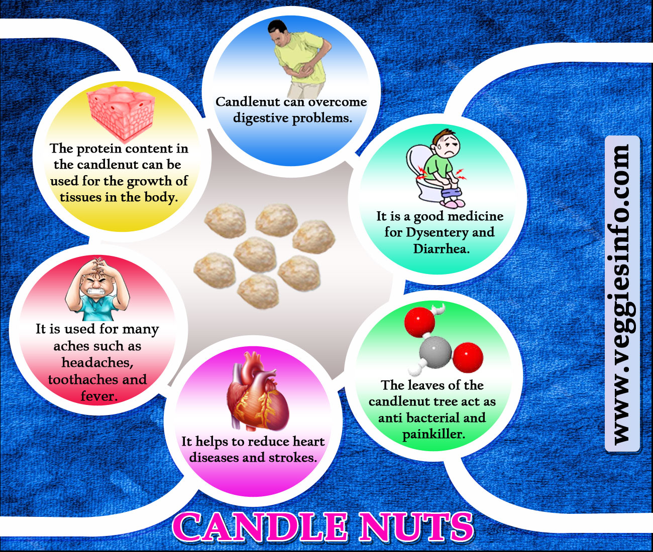 Candle Nuts Various Health Benefits