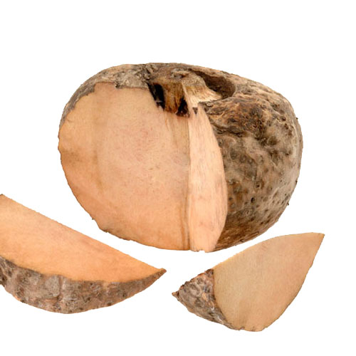 Elephant Foot yam Health Benefits