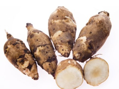 Jerusalem Artichoke Root Vegetable Medicinal Uses
