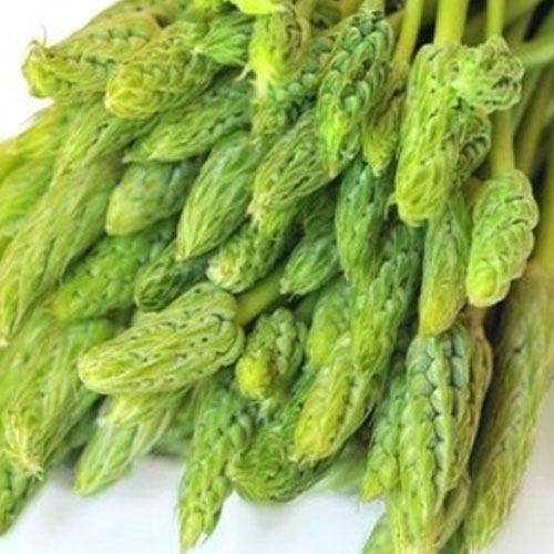 Prussian Asparagus Properties And its Health Benefits