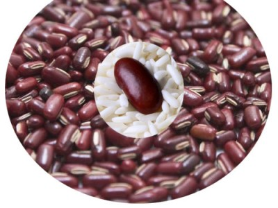 Rice Bean Various Uses And Facts