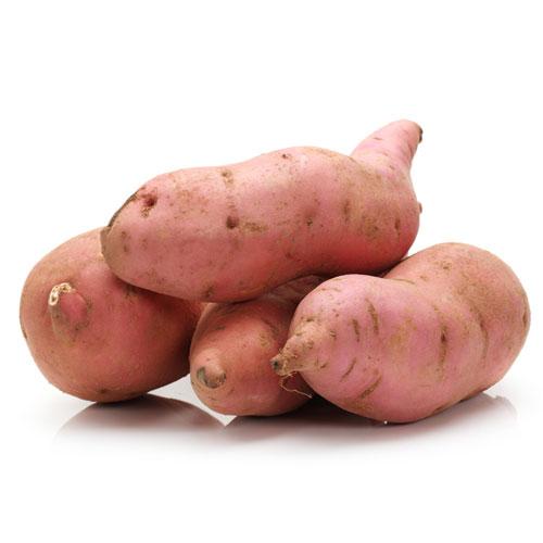 Sweet Potato Root Vegetable Various Uses