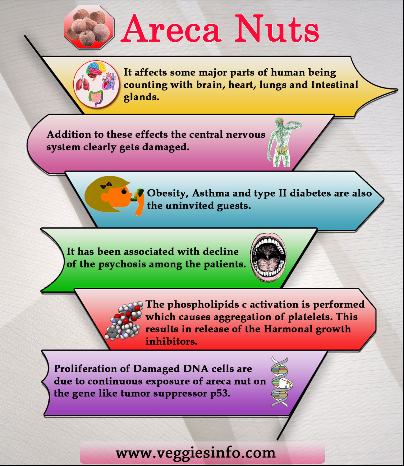 Areca Nuts Unknown Facts