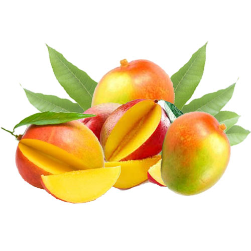 Bush Mango Nuts Nutritional Ingredients And Uses