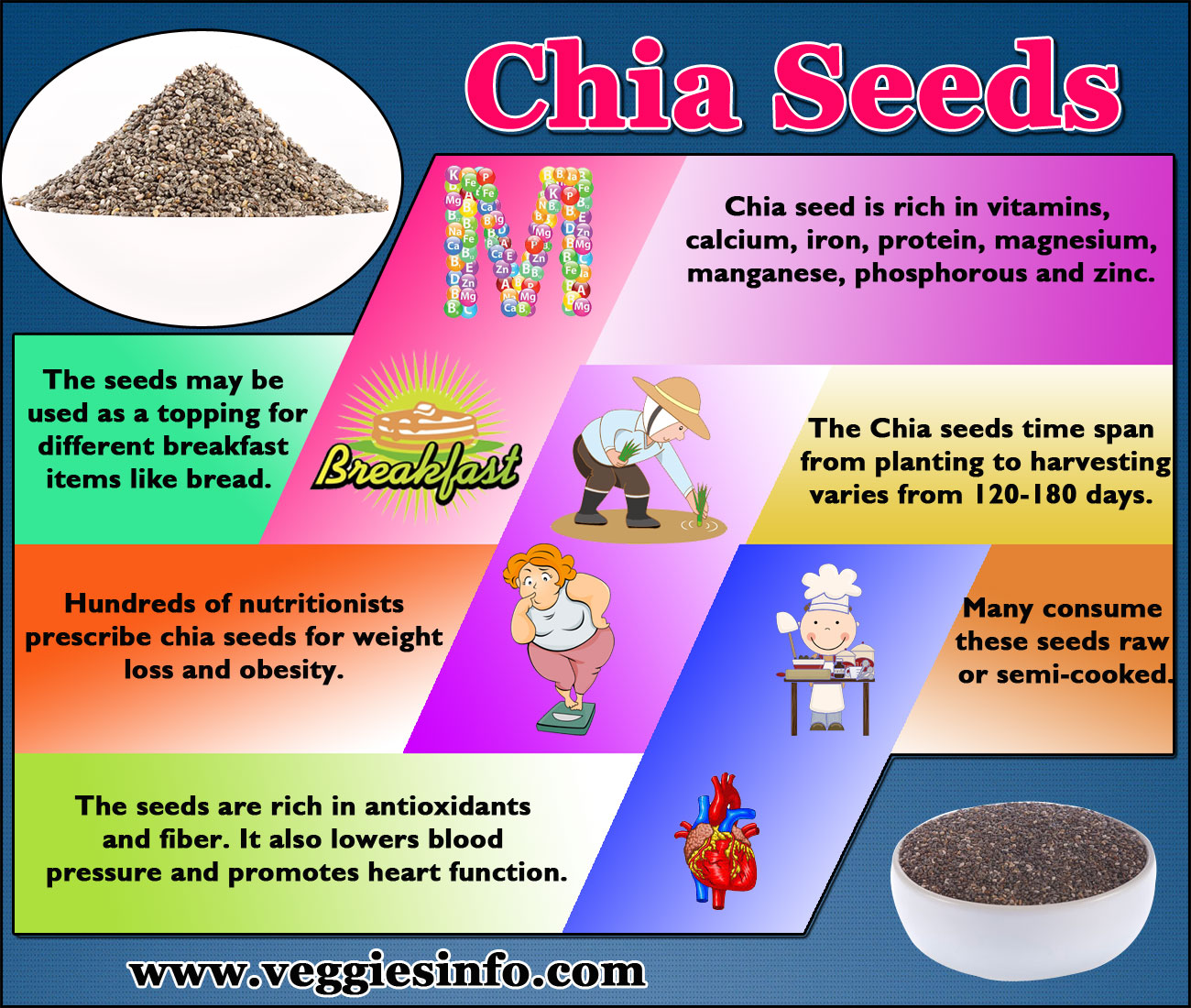 Chia seeds nutritional value