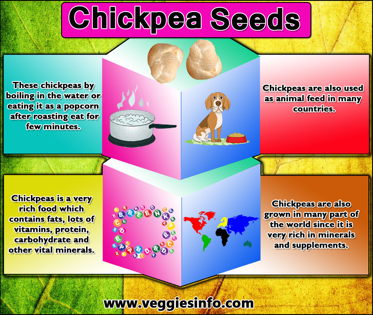 Chickpea Health Benefits