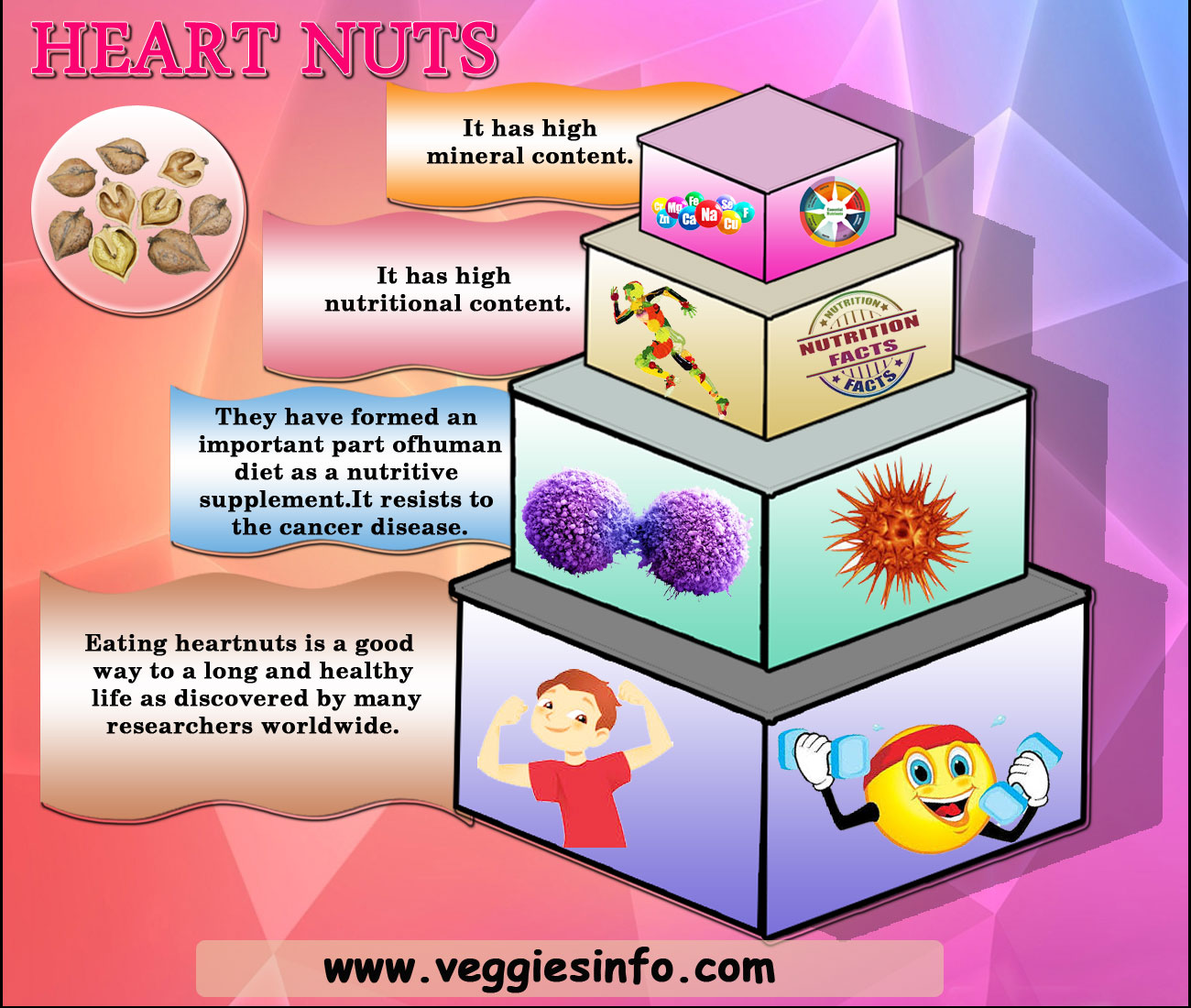 Heartnuts Nutrition Guide