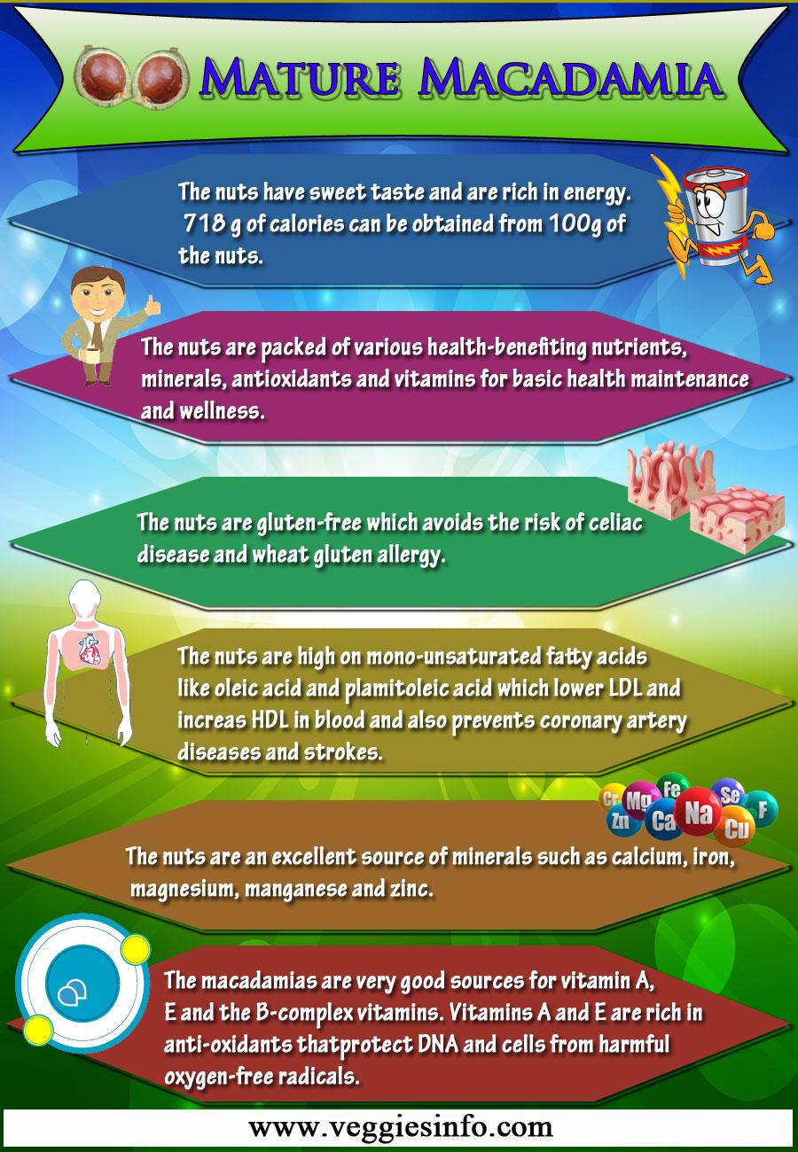 Mature Macadamia Health Benefits