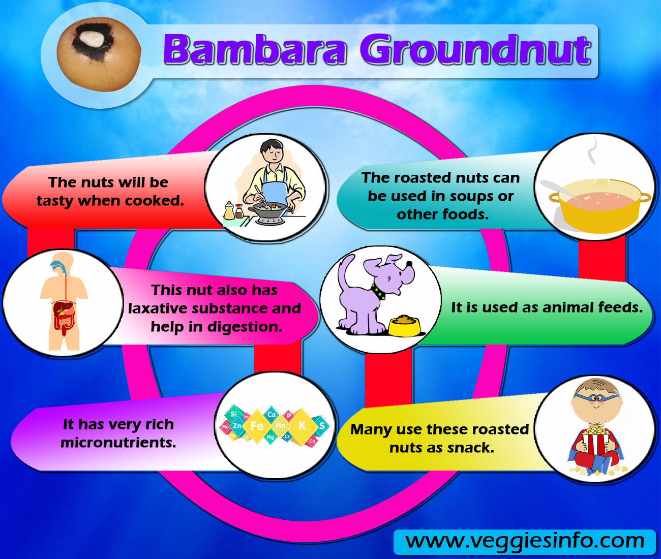 Bambara Groundnut Health Benefits And Its Uses