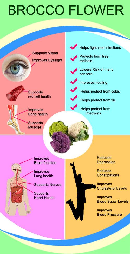 Benefits of Brocco Flower