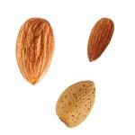 Johnstone River Almond Nutritinal value