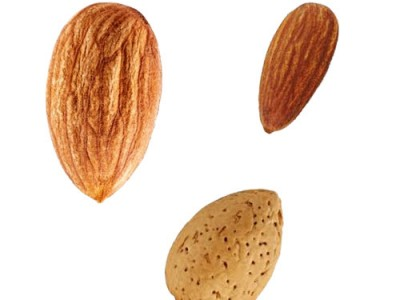 Johnstone River Almond Aspects and Health Facts