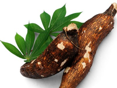Cassava Demands And Its Health Properties