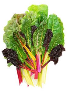 Chard Health Benefits