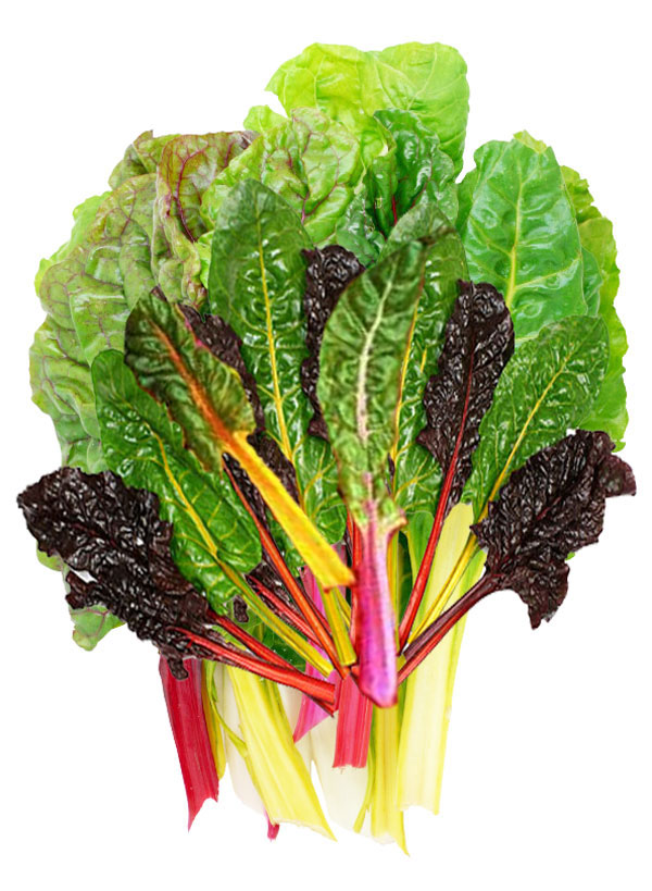Nutrition Guide & Health Properties | Chard
