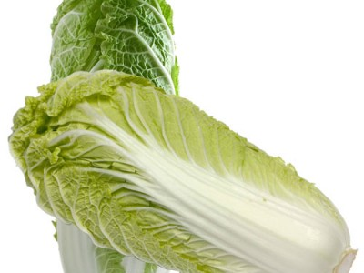Chinese cabbage Nutrition Guide and Benefits