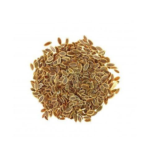 Dill Seed Unknown Medicinal Values