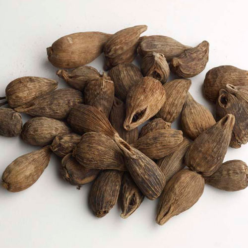 Ethiopian Cardamom Properties,Cultivation And  Uses