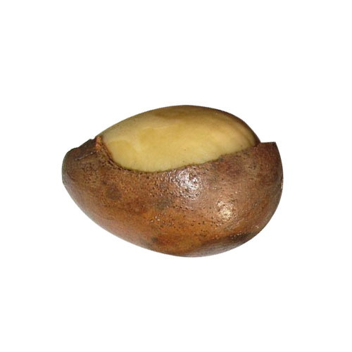 Yellow Walnut Nutritional Information And its Health Uses