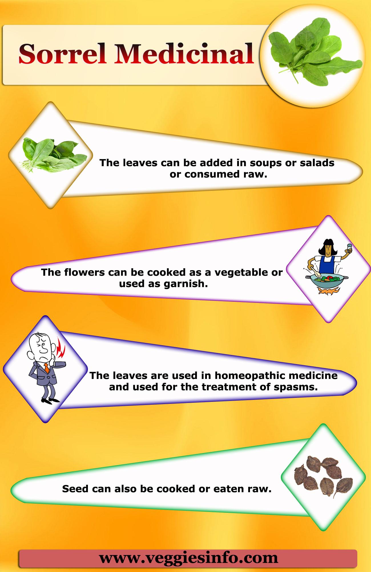 Sorrel Medicinal Uses