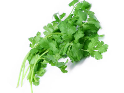 Coriander Leaves Benefits And Its Properties