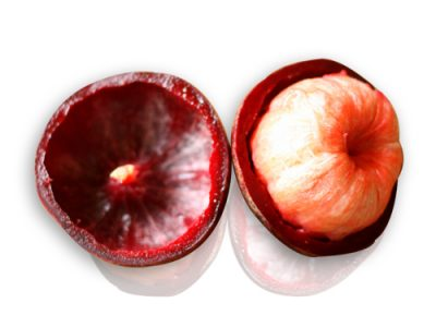 Kokum Medicinal Pharmaceutical And Culinary Uses