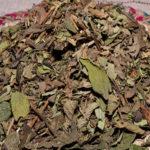 Koseret Leaves
